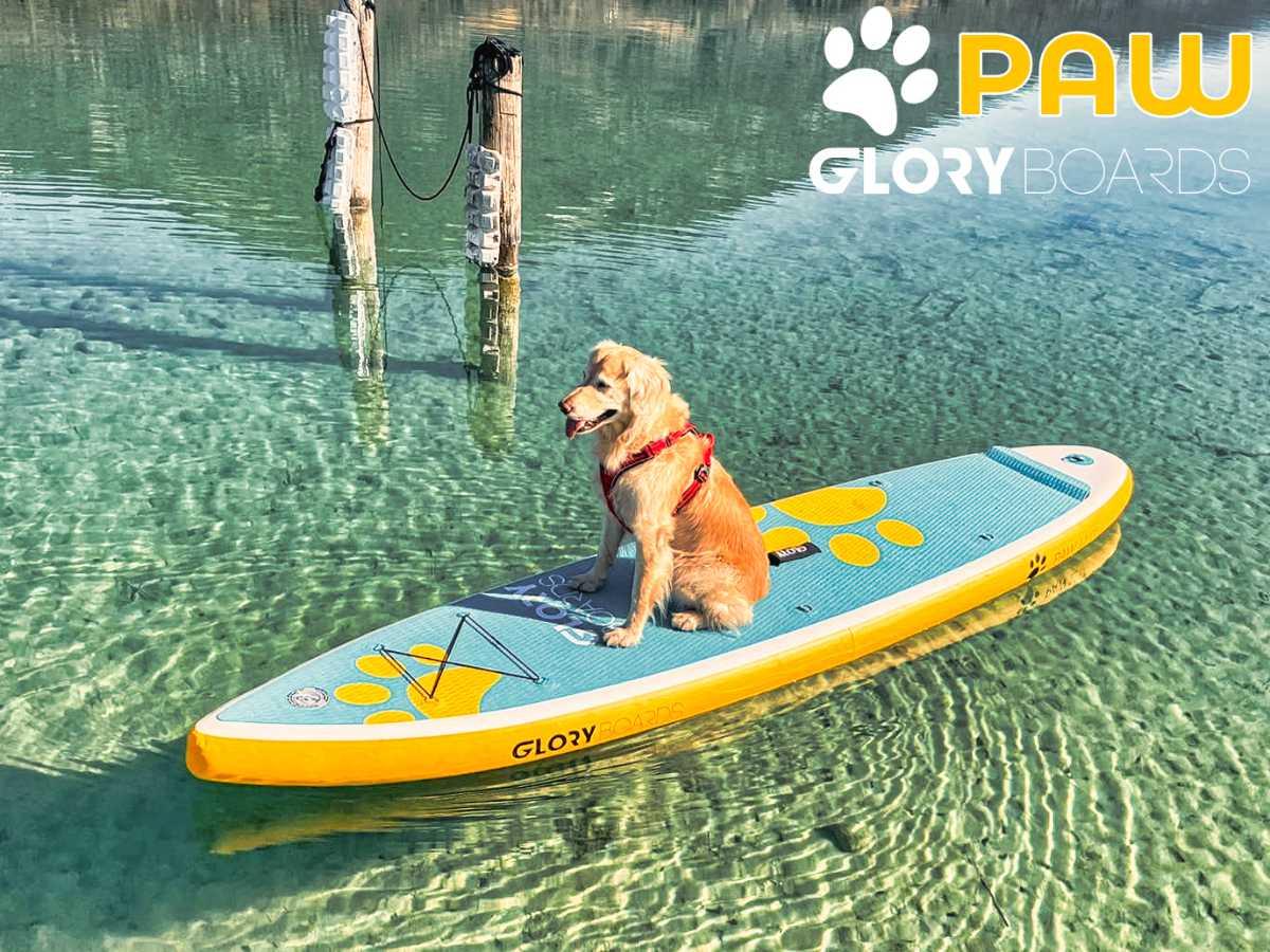 Gloryboards PAW Hunde SUP Board